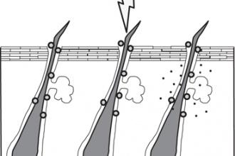 Adapalene pretreatment increases follicular penetration of clindamycin